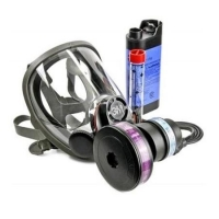 3M 3M902-02 - Power Flow Full Face Battery Powered Respirator - Click for more info
