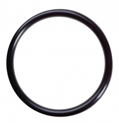 O-ring For Sediment Filter Housing - Click for more info