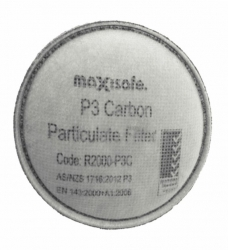 Maxiguard P3 Filter (Pair) - Click for more info